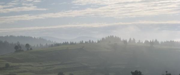 Закарпатье - 28 Сентября 2011 - Вертикаль